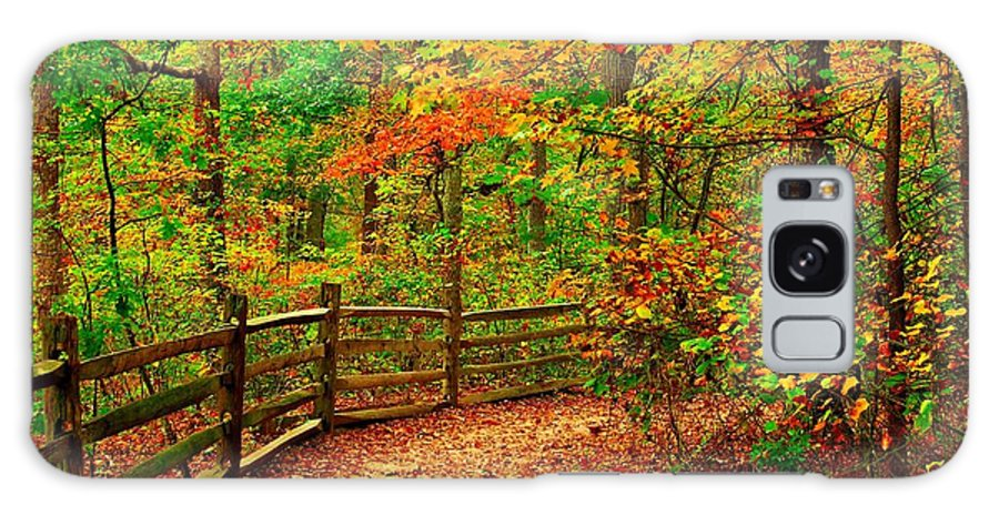 Autumn Landscapes Galaxy S8 Case featuring the photograph Autumn Bend - Allaire State Park by Angie Tirado