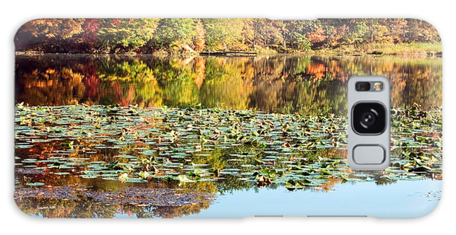 Autumn Galaxy S8 Case featuring the photograph Autumn Colors by Amanda Kiplinger