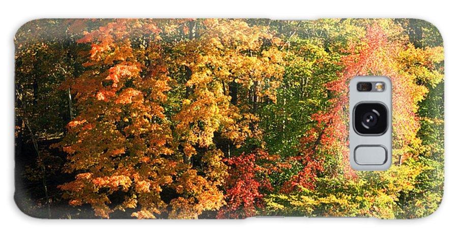 Autumn Galaxy S8 Case featuring the photograph Autumn Colors II by Amanda Kiplinger