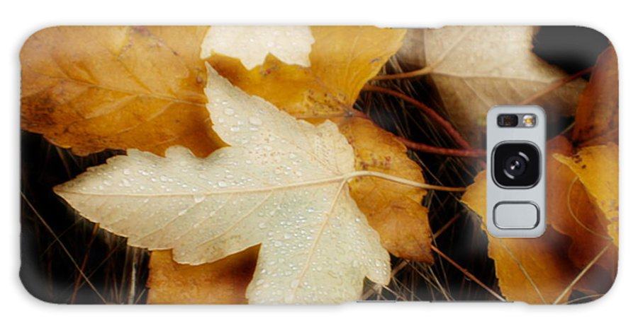 Leaf Galaxy S8 Case featuring the photograph Autumn Dew by Idaho Scenic Images Linda Lantzy