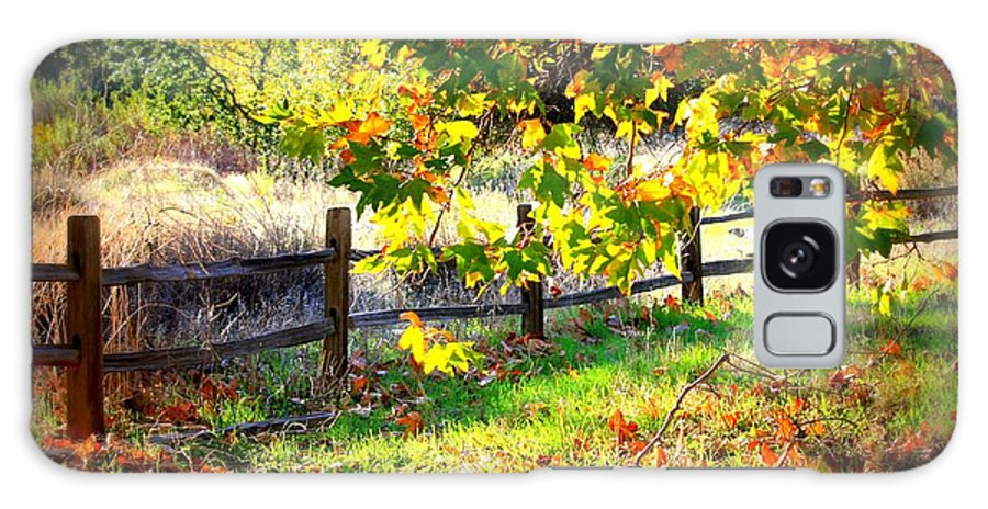 Fences Galaxy S8 Case featuring the photograph Autumn Fence by Carol Groenen