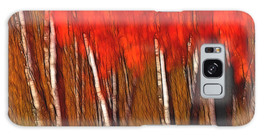Trees Galaxy S8 Case featuring the photograph Autumn Fire by Bill Morgenstern