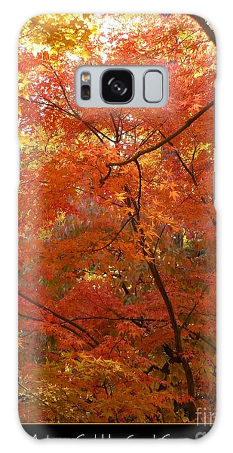 Fall Galaxy S8 Case featuring the photograph Autumn Gold Poster by Carol Groenen