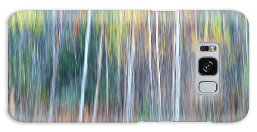 Forest Pastels Form An Autumn Impression Galaxy S8 Case featuring the photograph Autumn Impression by Bill Morgenstern
