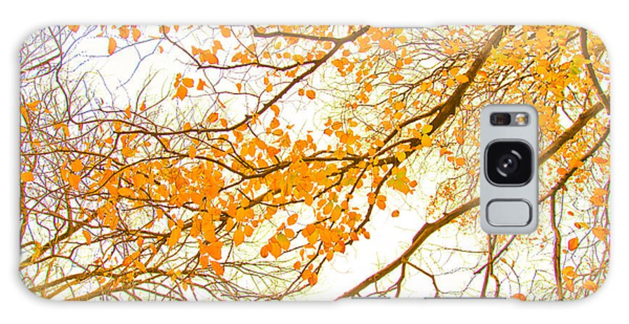 Spring Flowers Galaxy S8 Case featuring the photograph Autumn Leaves by Az Jackson
