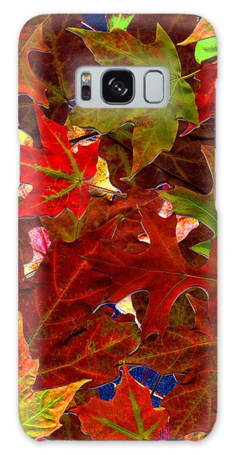 Collage Galaxy Case featuring the photograph Autumn Leaves by Nancy Mueller