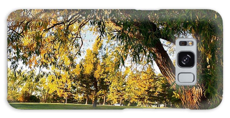 Autumn Galaxy S8 Case featuring the photograph Autumn Light by Cristina Stefan