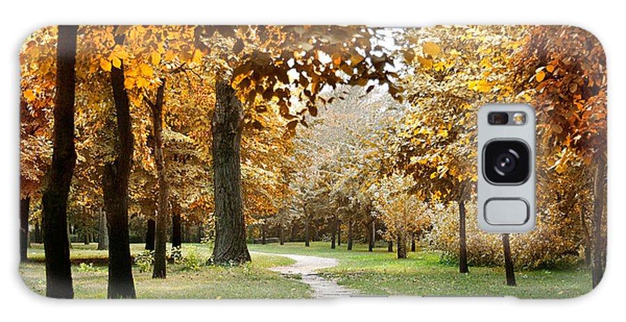 Fall Galaxy S8 Case featuring the photograph Autumn by Masha Batkova