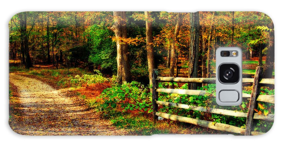 Autumn Galaxy S8 Case featuring the photograph Autumn Moment - Allaire State Park by Angie Tirado