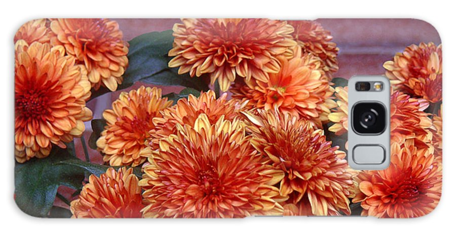 Nature Galaxy S8 Case featuring the photograph Autumn Mums - Against Brick by Lucyna A M Green