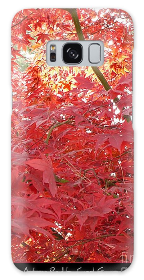 Autumn Galaxy S8 Case featuring the photograph Autumn Red Poster by Carol Groenen
