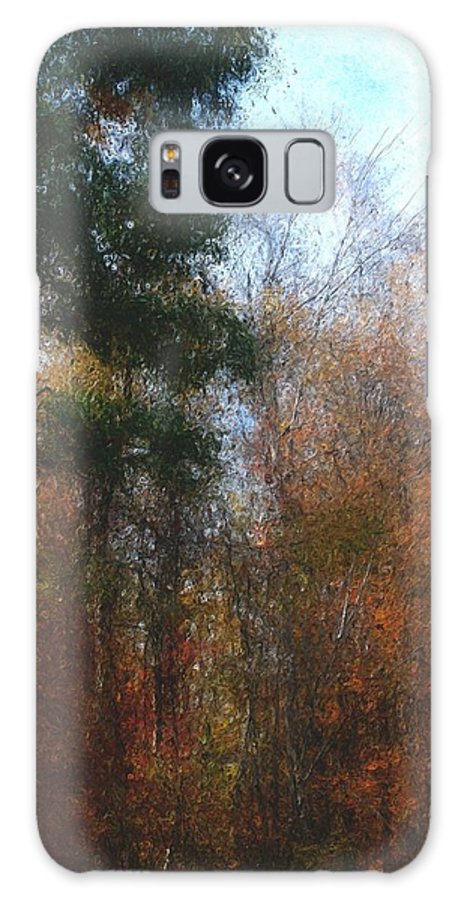 Nature Galaxy S8 Case featuring the photograph Autumn Scene 10-23-09 by David Lane