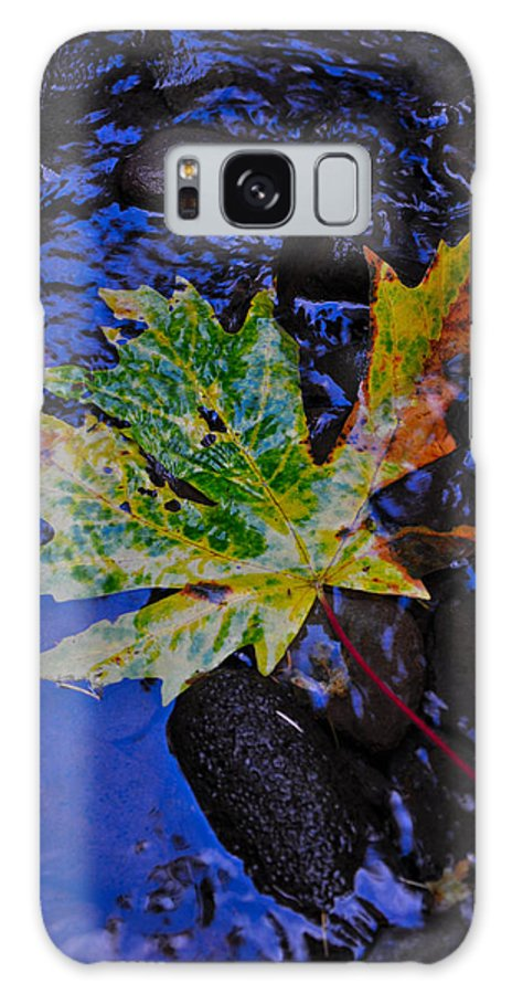 Autumn Galaxy S8 Case featuring the photograph Autumn Stream 2 by Noah Cole
