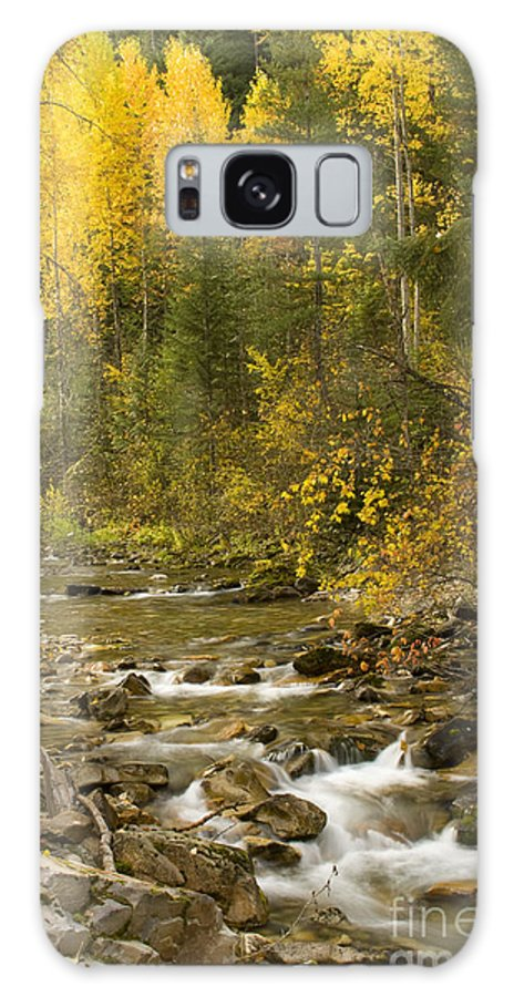 Idaho Galaxy Case featuring the photograph Autumn Stream by Idaho Scenic Images Linda Lantzy
