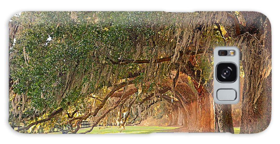 Avenue Galaxy S8 Case featuring the photograph Avenue Of Oaks by Linda Vodzak