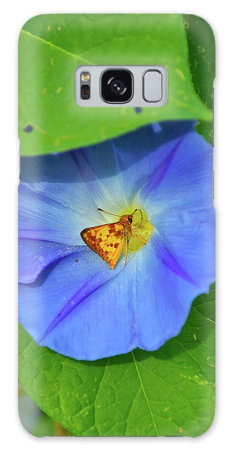 Flower Galaxy S8 Case featuring the photograph Azure Morning Glory by Henri Irizarri