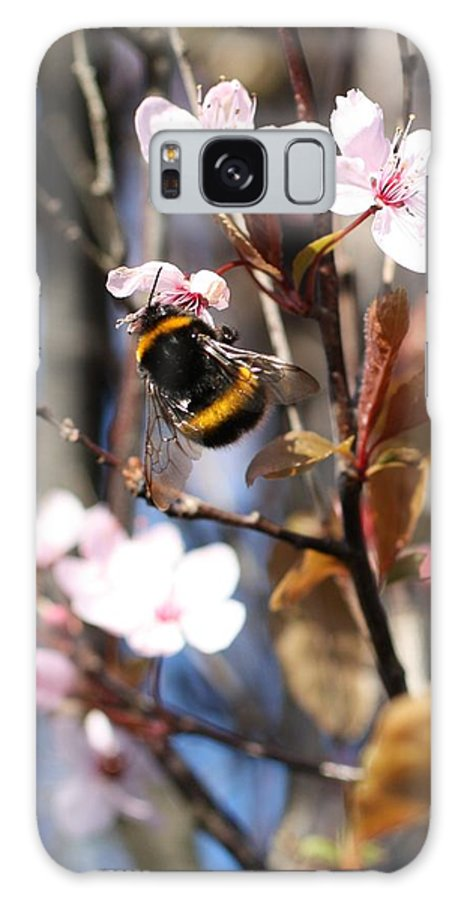 Bee Galaxy S8 Case featuring the photograph B And B by Martina Fagan