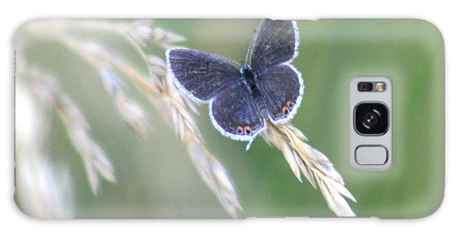 Bug Galaxy S8 Case featuring the photograph Baby Blue by David Dunham