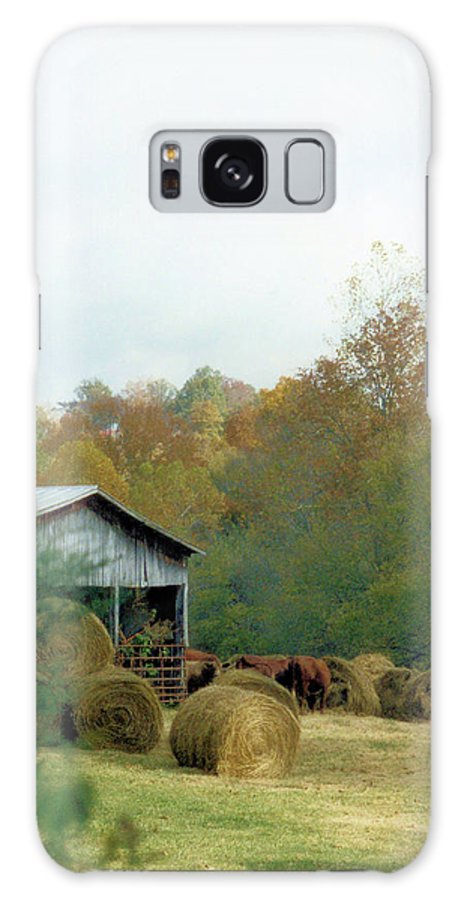 Animals Galaxy S8 Case featuring the photograph Back At The Barn by Jan Amiss Photography
