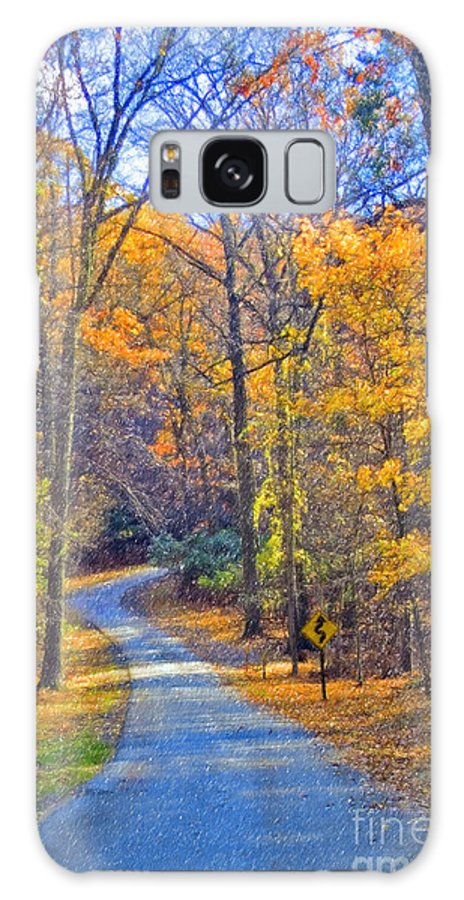 Back Road Fall Colors Foliage Revolutionary Civil War Road Valley Forge Pa Galaxy S8 Case featuring the photograph Back Road Fall Foliage by David Zanzinger