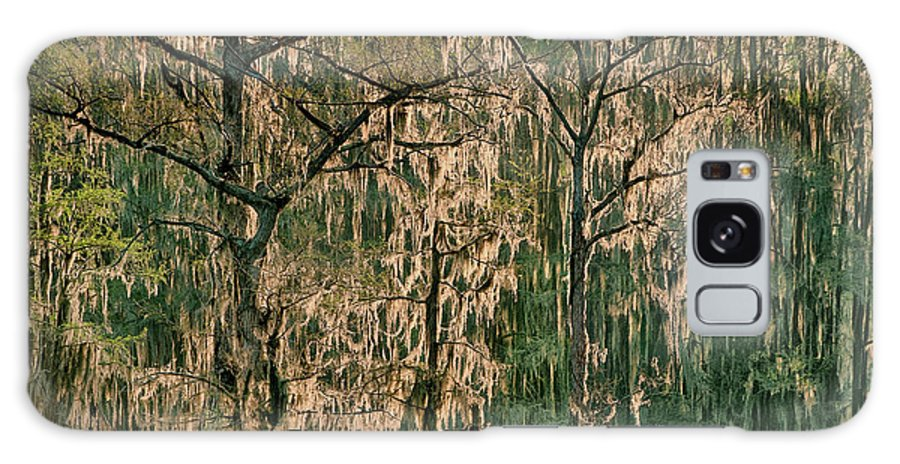 Dave Welling Galaxy S8 Case featuring the photograph Backlit Moss-covered Trees Caddo Lake Texas by Dave Welling