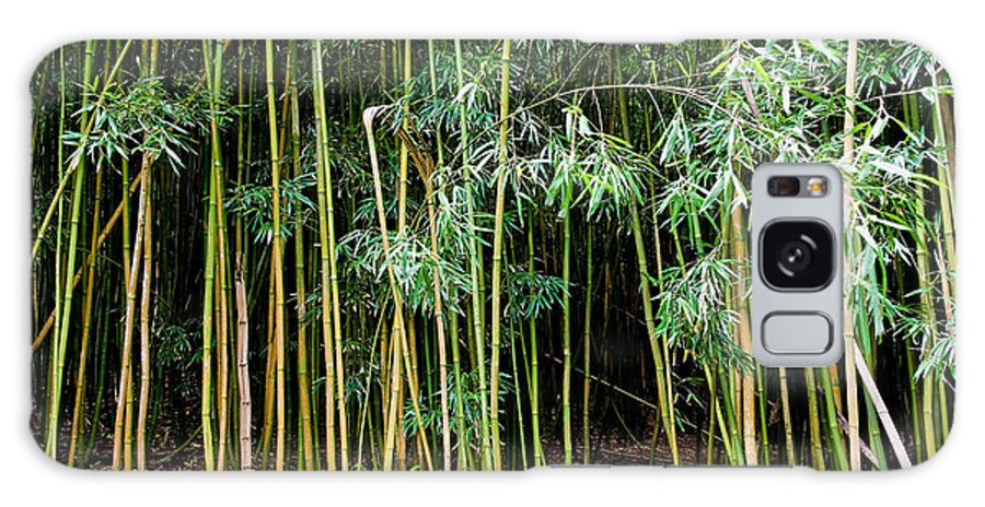 Bamboo Wind Chimes Galaxy Case featuring the photograph Bamboo Wind Chimes Waimoku Falls Trail Hana Maui Hawaii by Michael Bessler
