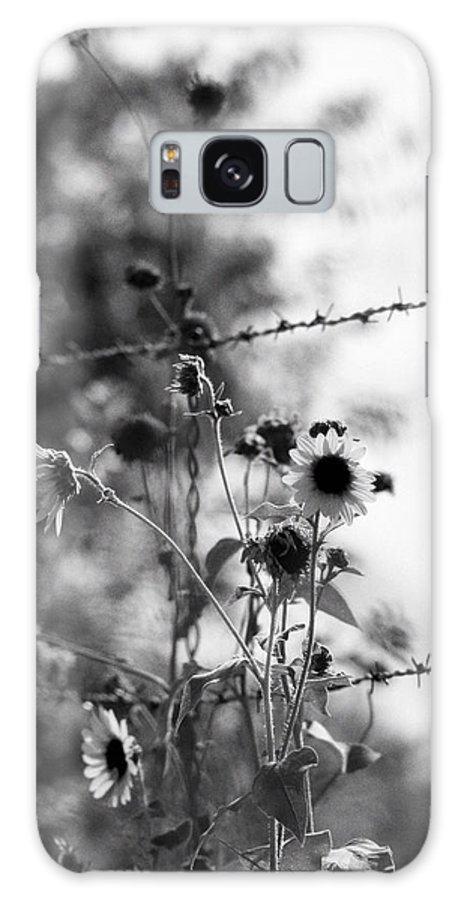 Flowers Galaxy S8 Case featuring the photograph Barbarous by Elizabeth Hart