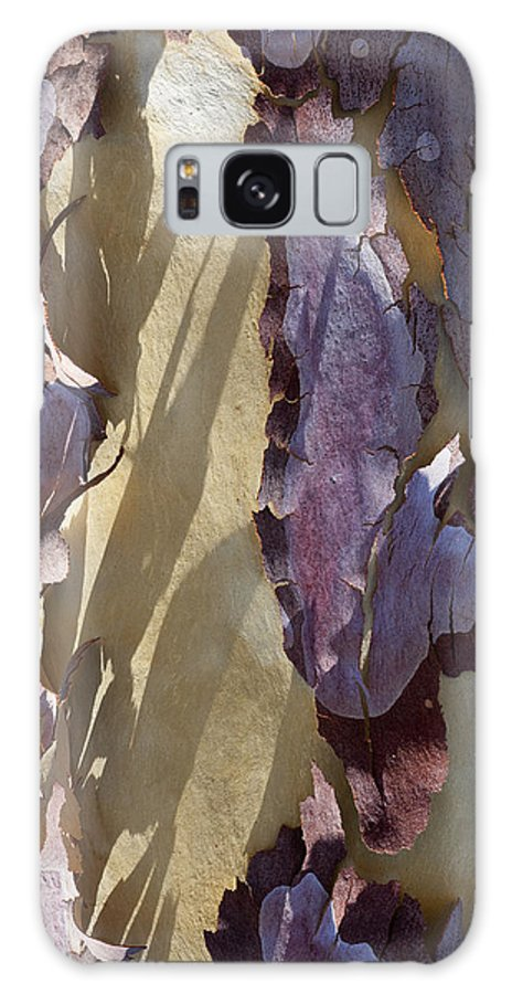 Tree Galaxy S8 Case featuring the photograph Bark Texture by Kelley King