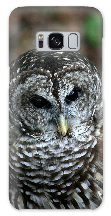 Owl Galaxy S8 Case featuring the photograph Barn Owl 2 by David Dunham
