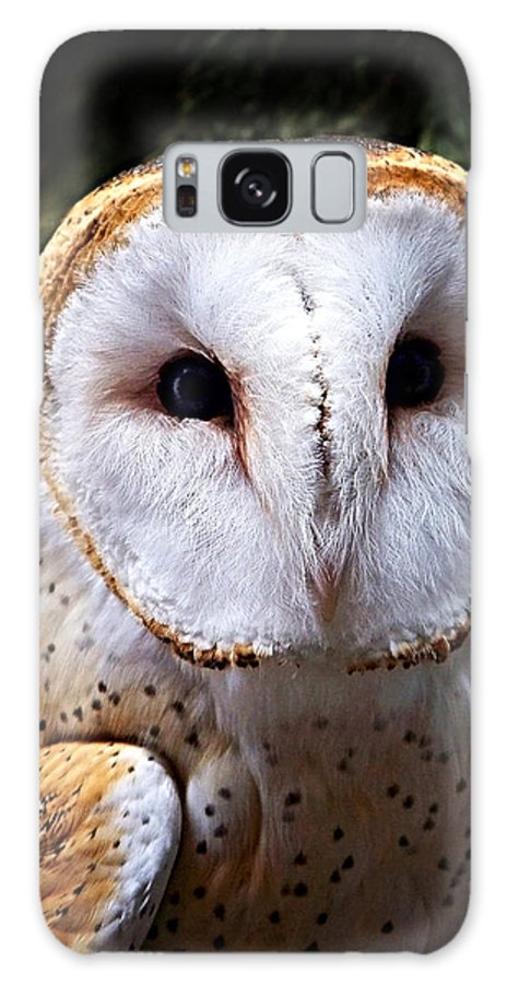 Barn Owl Galaxy S8 Case featuring the photograph Barn Owl by Anthony Jones