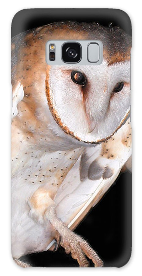 Owl Collection Galaxy S8 Case featuring the photograph Barn Owl by Jean Noren