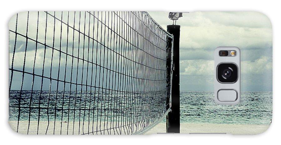 Beach Galaxy S8 Case featuring the photograph Beach Bird by Zena Zero