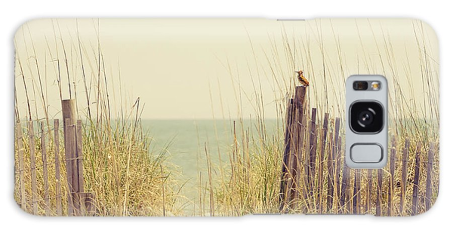 Beach Galaxy S8 Case featuring the photograph Beach Fence In Grassy Dune South Carolina by Stephanie McDowell