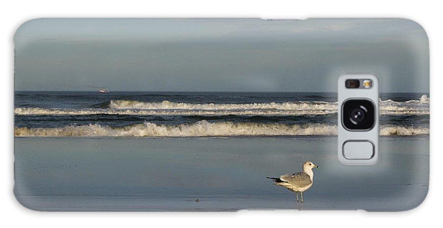 Sea Ocean Gull Bird Beach Reflection Water Wave Sky Galaxy S8 Case featuring the photograph Beach Patrol by Andrei Shliakhau