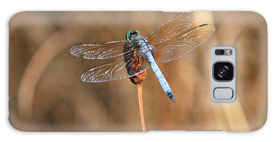 Dragonfly Galaxy S8 Case featuring the photograph Beautiful Broken Wing by Carol Groenen