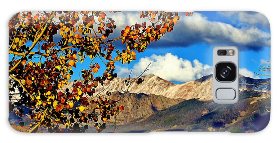 Fall Galaxy S8 Case featuring the photograph Beautiful Colorado by Ellen Heaverlo