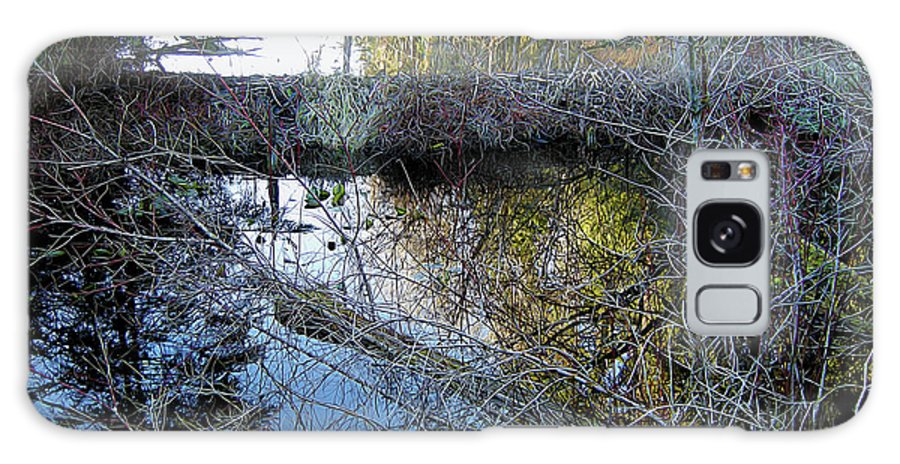 Nature Galaxy S8 Case featuring the photograph Beaver Dam by Linda Carruth