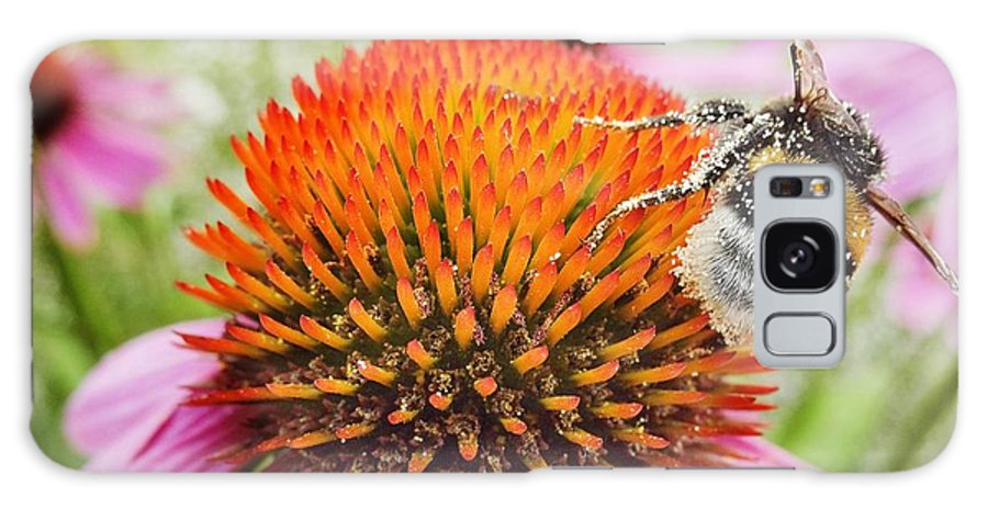 Air Galaxy S8 Case featuring the photograph Bee And Pink Flower by Vadzim Kandratsenkau