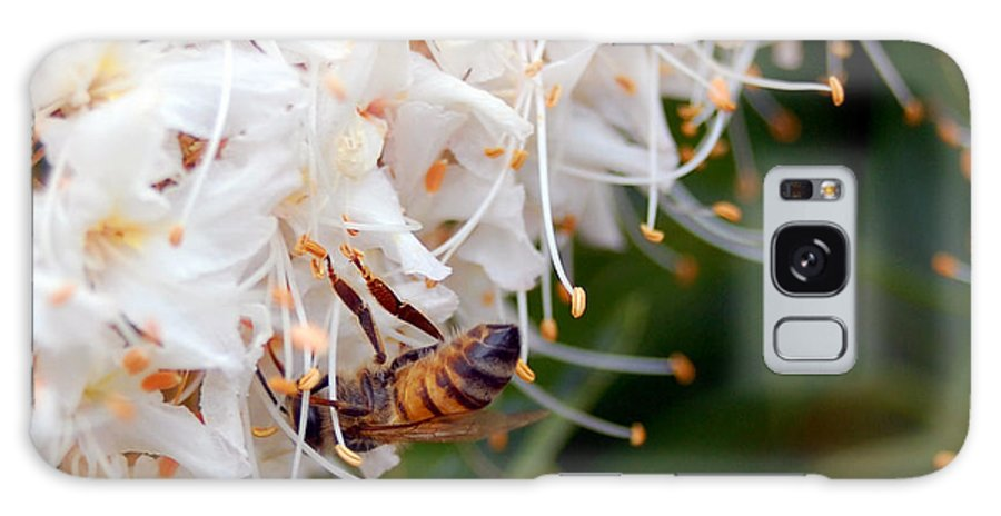 Flower Galaxy S8 Case featuring the photograph Bee On Flowers 1 by Amy Fose