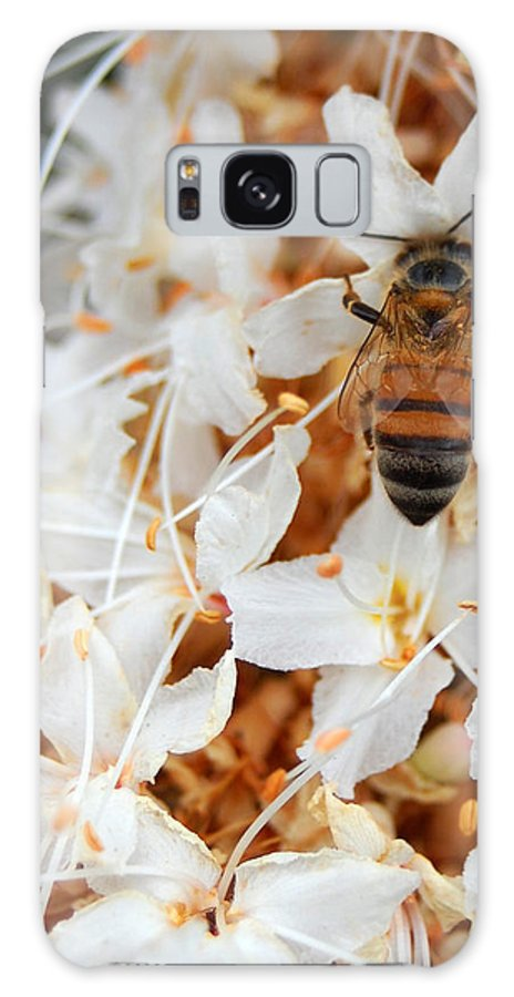 Flower Galaxy S8 Case featuring the photograph Bee On Flowers 2 by Amy Fose