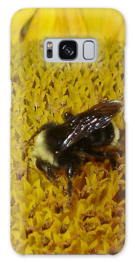 Bee Galaxy Case featuring the photograph Bee On Sunflower 4 by Chandelle Hazen
