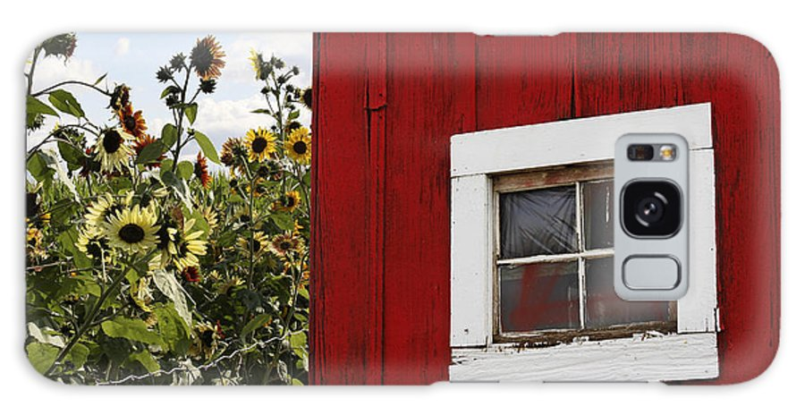 Barn Galaxy S8 Case featuring the photograph Behind The Barn by Rebecca Cozart