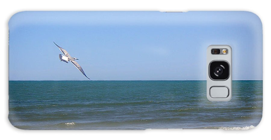 Nature Galaxy S8 Case featuring the photograph Being One With The Gulf - Soaring by Lucyna A M Green