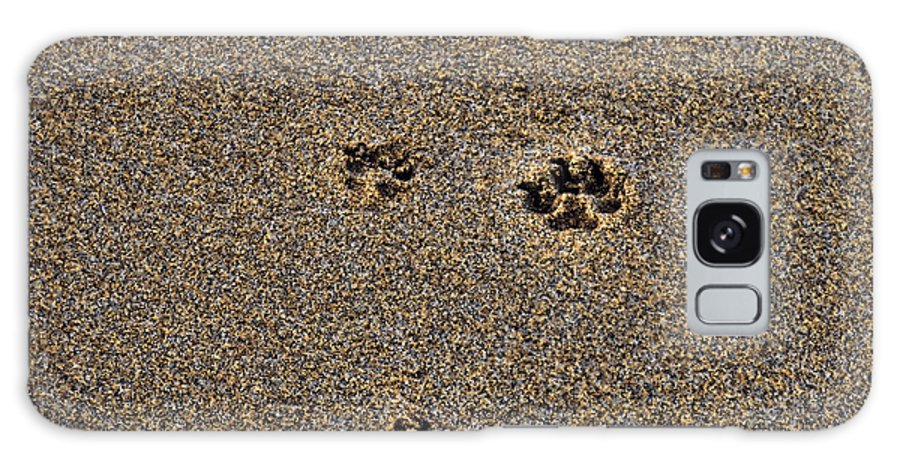 Dog Prints On Sand Galaxy S8 Case featuring the photograph Best Friend by Kristalin Davis