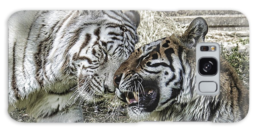 Tiger Galaxy S8 Case featuring the photograph Best Friends by Keith Lovejoy