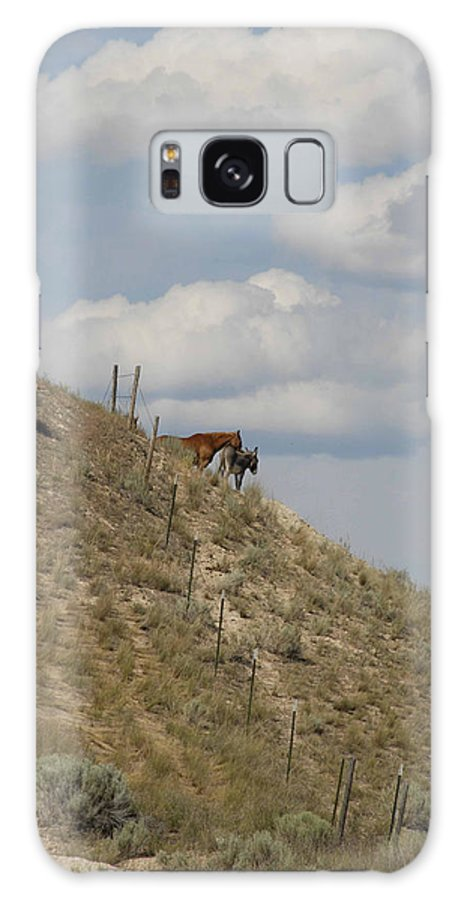 Horse Galaxy S8 Case featuring the photograph Best Of Friends by Jody Lovejoy
