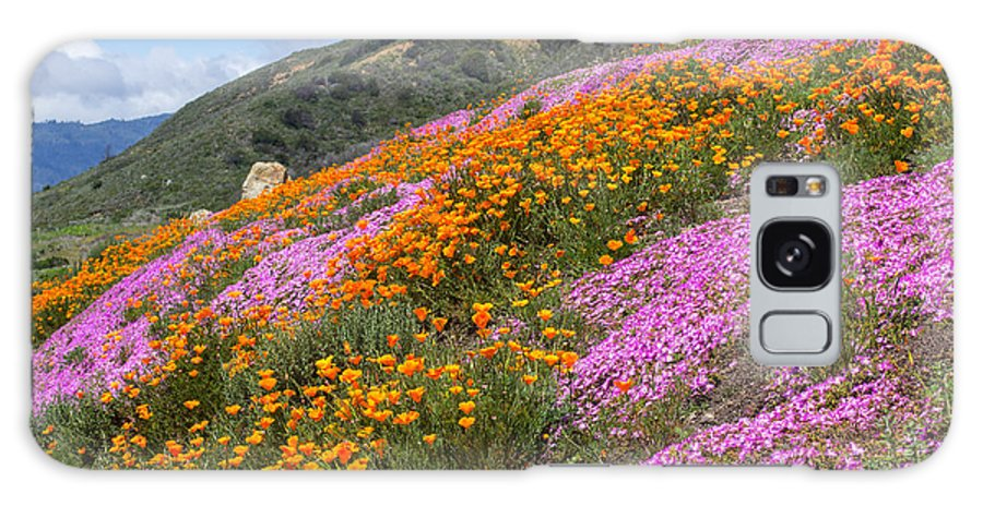 Flowers Galaxy S8 Case featuring the photograph Big Sur Spring by Kris Hiemstra