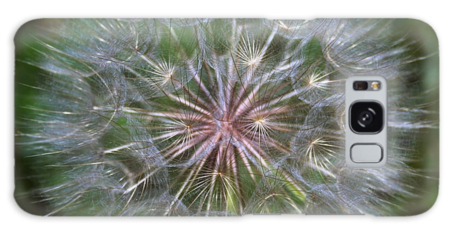 Dandelion Galaxy S8 Case featuring the photograph Big Wish by Linda Sannuti