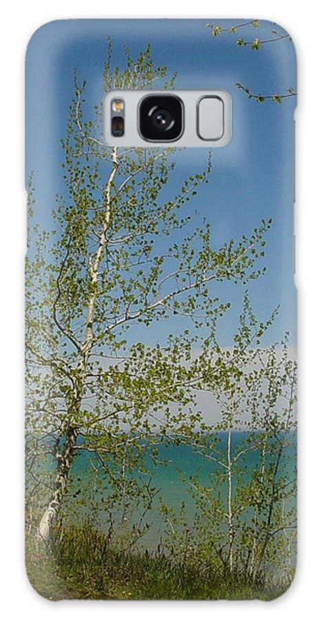 Birch Tree Galaxy S8 Case featuring the photograph Birch Tree Over Lake by Anita Burgermeister