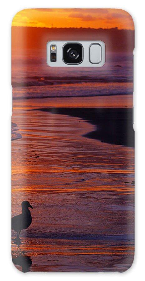 Beach Ocean Bird Sunset Orange Waves Galaxy S8 Case featuring the photograph Bird At Sunset by Jill Reger